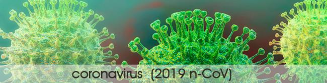 corovirus-650